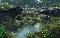 Stagno pacifico del terreno boscoso Fotografia Stock Libera da Diritti