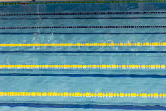 Stagno, piscina, piscina, piscine, carro armato, corda, corda, cordicella, corda, linea, chorda, nuoto, nuotata, natation, acqua, fotografie stock libere da diritti