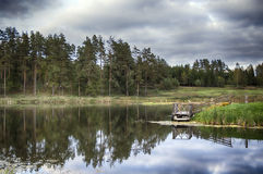 Stagno rurale selvaggio in foresta di conifere vicina a lamella Fotografie Stock