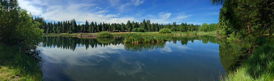Stagno sul ranch nero in sorelle, Oregon della collina Fotografie Stock