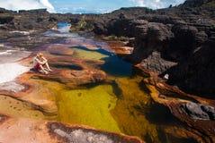 Stagno sulla sommità di Tepui del Roraima, Gran Sabana, Venezuela Fotografia Stock Libera da Diritti
