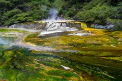 Stagno termico alla valle vulcanica di Waimangu nel Distretto di Rotorua, isola del nord, Nuova Zelanda immagine stock