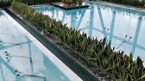 Stagno termico - superficie di ribollimento dell'acqua archivi video