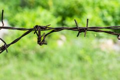 Stahl, der Draht oder Stacheldraht einzäunt Stockfoto