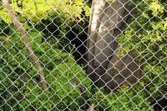 Stahlmasche blockierte Bäume, Felsen und natürliches Stockfoto