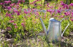 Stahlwasserkanister gegen Blumen im Sommergarten Lizenzfreie Stockfotografie