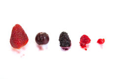Stain from fruit Royalty Free Stock Photo