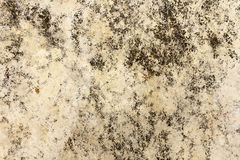 Stain old concrete floor background texture Stock Images
