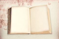 与模子的被打开的旧书在stainded葡萄酒backgro做了纸 免版税库存照片