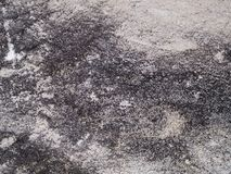 Stained concrete Royalty Free Stock Photo