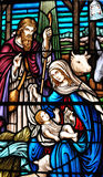 Stained galss window of birth of Jesus Royalty Free Stock Photography