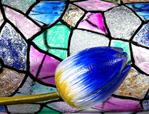 Free Stained Glass Royalty Free Stock Image - 4508176