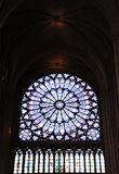 Stained glass. In the notre dam cathedral Royalty Free Stock Photos