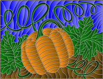 Stained glass abstract illustration with pumpkin Stock Photos