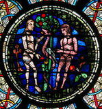 Stained Glass - Adam and Eve. Stained Glass in Notre Dame Cathedral of Paris depicting Adam and Eve and the Original Sin with the Forbidden Fruit Stock Image