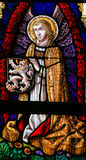 Stained Glass - Angel and the Lion of Flanders. Stained Glass window depicting an Angel holding the Flemish Lion in the Cathedral of Saint Bavo in Ghent stock photography