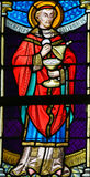 Stained Glass - Carolus Borromeus Royalty Free Stock Photo