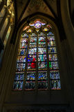 Stained glass  in the cathedral  the Dutch city of Den Bosch Royalty Free Stock Photo