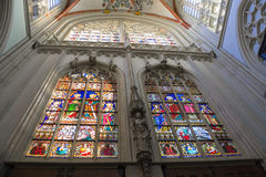 Stained glass  in the cathedral  the Dutch city of Den Bosch Stock Image