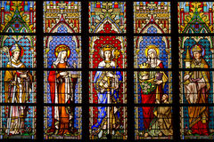 Stained glass in the cathedral royalty free stock photography
