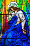 Stained Glass in a Catholic Church Stock Photography