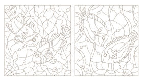 Stained glass contour kit with aquarium fish,fish surgery and fish clowns Royalty Free Stock Photos
