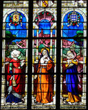 Stained Glass of the Countesses of Perche in Notre Dame church o Stock Images