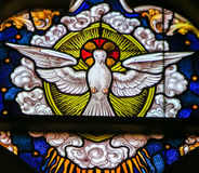 Stained Glass - Dove, Holy Spirit. Stained Glass depicting the Holy Spirit as a Dove, in the Cathedral of Saint Bavo in Ghent, Belgium Royalty Free Stock Image
