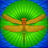 Stained glass dragonfly Stock Image
