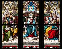 Stained Glass, Glass, Window, Material royalty free stock photos