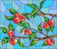 Stained glass illustration with Apple tree branch against the sky. Illustration in the style of a stained glass window with the branches of Apple trees , the Stock Photography