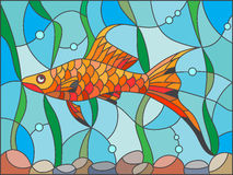 Stained glass illustration of an aquarium with fish amid seaweed and bubbles. Illustration in stained glass style with swordtail fish on the background of water Stock Photos