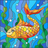 Stained glass illustration of aquarium fish, the goldfish in the background of the water and algae Stock Photography