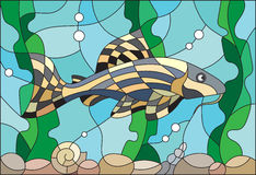 Stained glass illustration of aquarium fish. Illustration in stained glass style with a catfish on the background of water and algae Stock Photo
