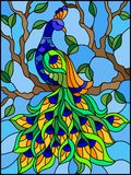 Stained glass illustration bird peacock and tree branches on background of blue sky. Illustration in stained glass style bird peacock and tree branches on stock illustration