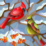 Stained glass illustration with birds cardinals on branch of Rowan Royalty Free Stock Photo