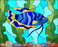 Stained glass illustration  blue  fish  on the background of water and algae. Illustration in stained glass style blue  fish  on the background of water and Royalty Free Stock Photography