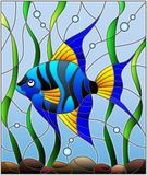 Stained glass illustration  blue  fish scalar on the background of water and algae. Illustration in stained glass style blue  fish scalar on the background of Stock Image