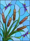 Stained glass illustration  with bouquet of   bulrush and dragonflies on a sky background Royalty Free Stock Photo