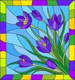 Stained glass illustration with bouquet of violet crocuses  on a blue background in the frame Stock Photography