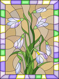 Stained glass illustration  with bouquet of  white snowdrops  on a   beige background in a bright frame. Illustration in stained glass style with bouquet of Royalty Free Stock Photography