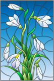 Stained glass illustration  with bouquet of  white snowdrops  on a  blue background. Illustration in stained glass style with bouquet of  white snowdrops  on a Stock Images