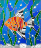 Stained glass illustration with bright aquarium fish. Illustration in stained glass style fish scalar on the background of water and algae Royalty Free Stock Images