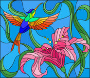 Stained glass illustration  with bright Hummingbird against the sky, foliage and flower of Lily Stock Photography