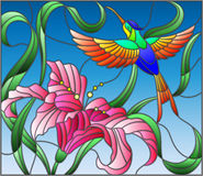 Stained glass illustration  with bright Hummingbird against the sky, foliage and flower of Lily Royalty Free Stock Images