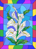 Stained glass illustration with buds and leaves of a Calla Lily flower in a bright frame. Illustration in stained glass style with flowers, buds and leaves of Stock Photos