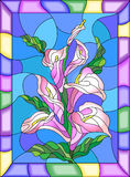 Stained glass illustration with buds and leaves of a Calla Lily flower in a bright frame Royalty Free Stock Image