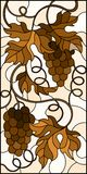 Stained glass illustration with a bunch of grapes and leaves ,brown tone, Sepia. The illustration in stained glass style painting with a bunch of grapes and Stock Photos