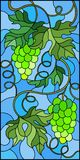 Stained glass illustration with a bunch of green grapes and leaves on blue background,vertical image. The illustration in stained glass style painting with a Stock Image