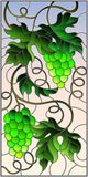 Stained glass illustration  with a bunch of green grapes and leaves on sky background,vertical image. The illustration in stained glass style painting with a Stock Image